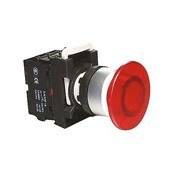 Illuminated Maintained Push Button (22mm)