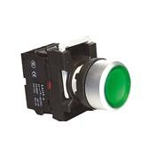 Illuminated Push Button (22mm)